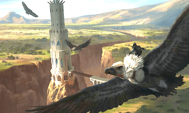 Wild Shape in D&D 5e: The Ultimate Guide